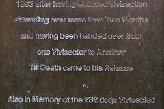 Plaque on Plinth of 1985 Brown Dog Statue (by Nicola Hicks) repeating original libel about University College (UCL)