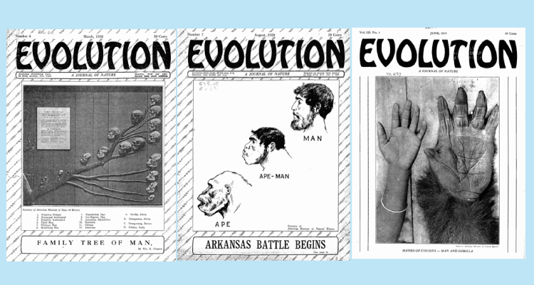 Evolution - A Journal of Nature - sample covers